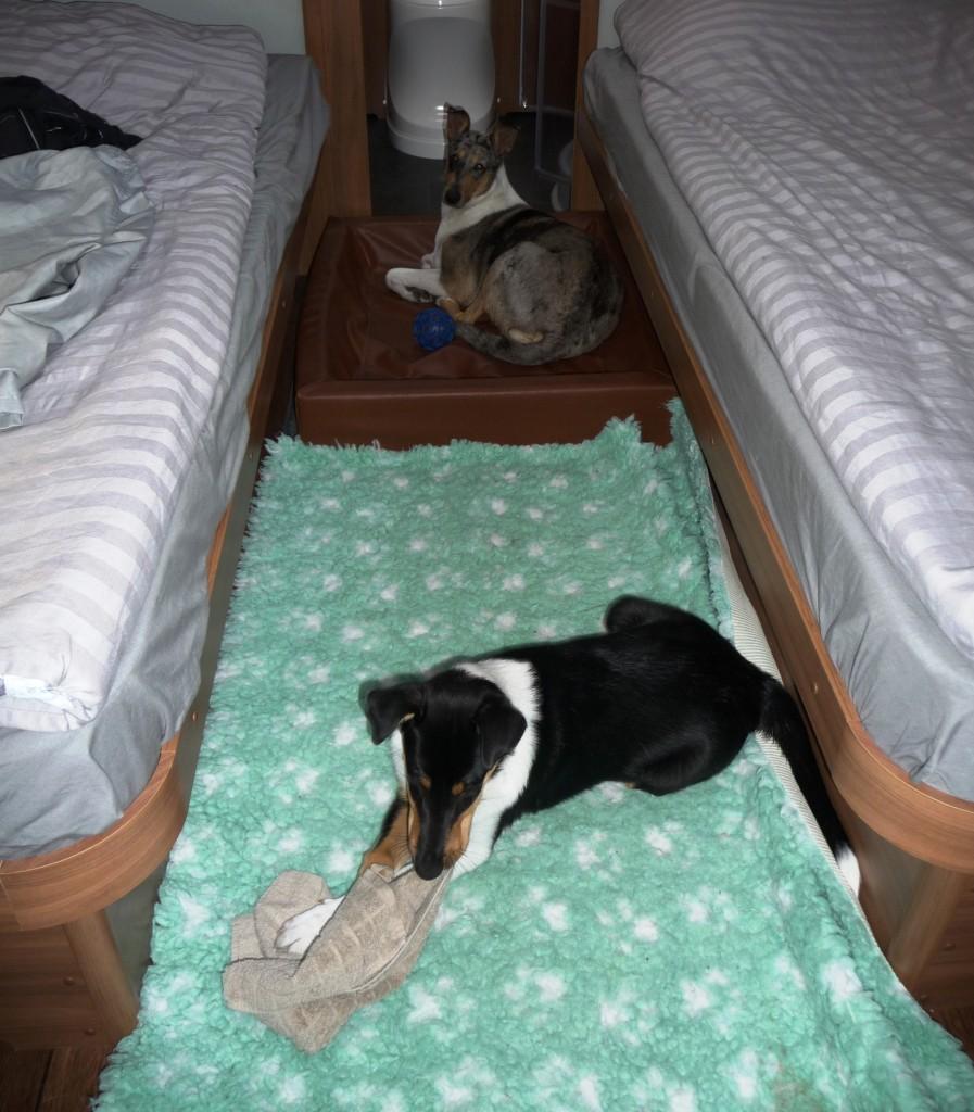 Här är våra sängplatser