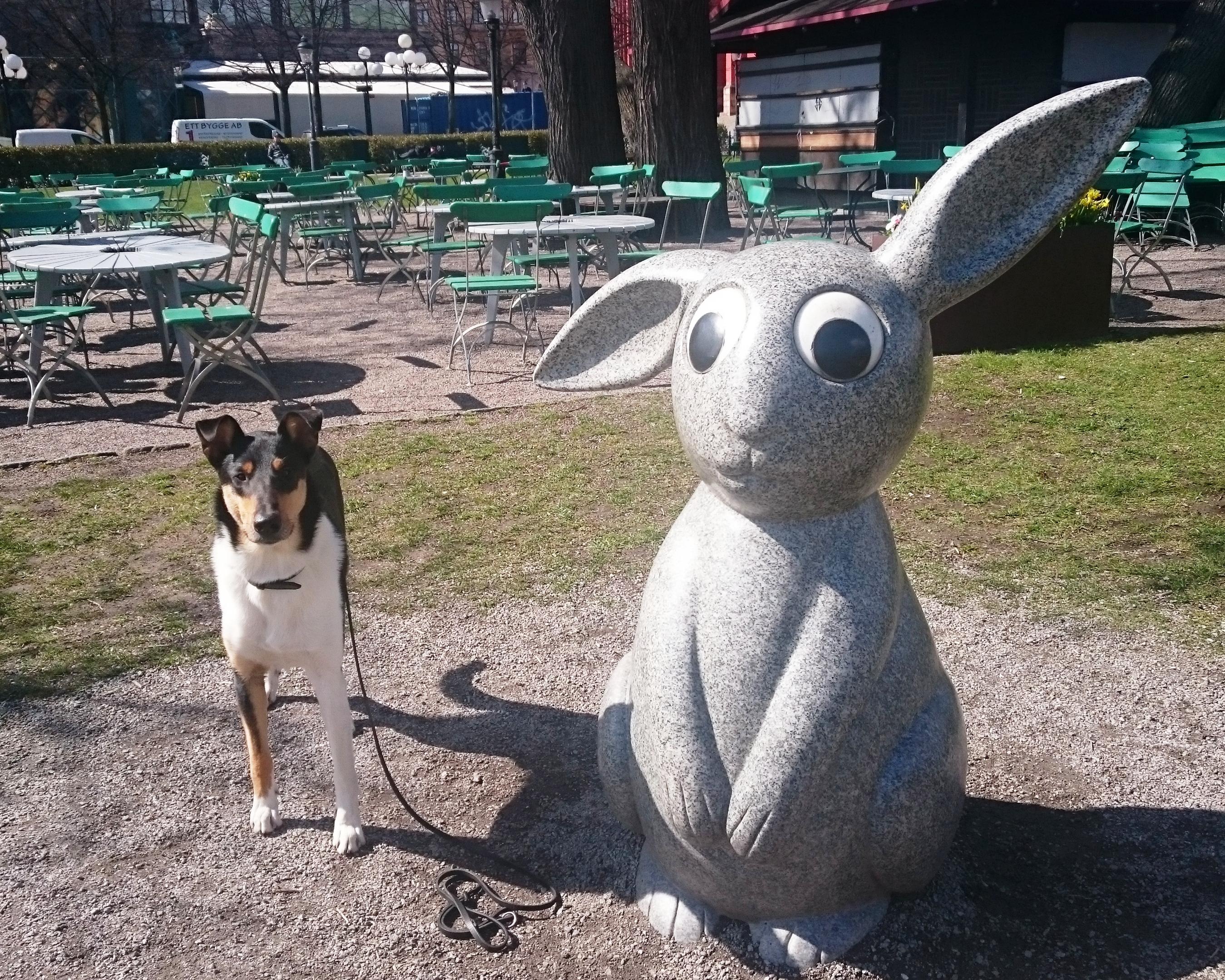 Argo träffade en kompis!